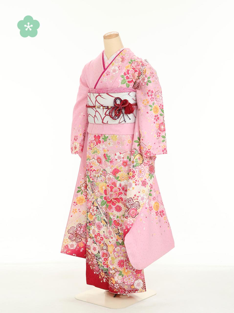 成人式衣裳1 おでかけOK!