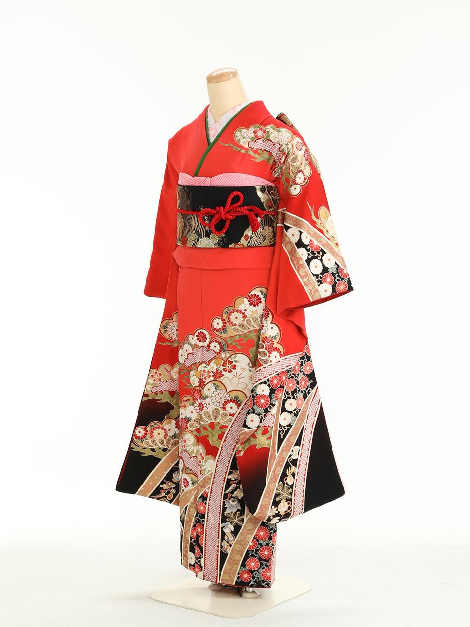 成人式衣裳5 おでかけNG