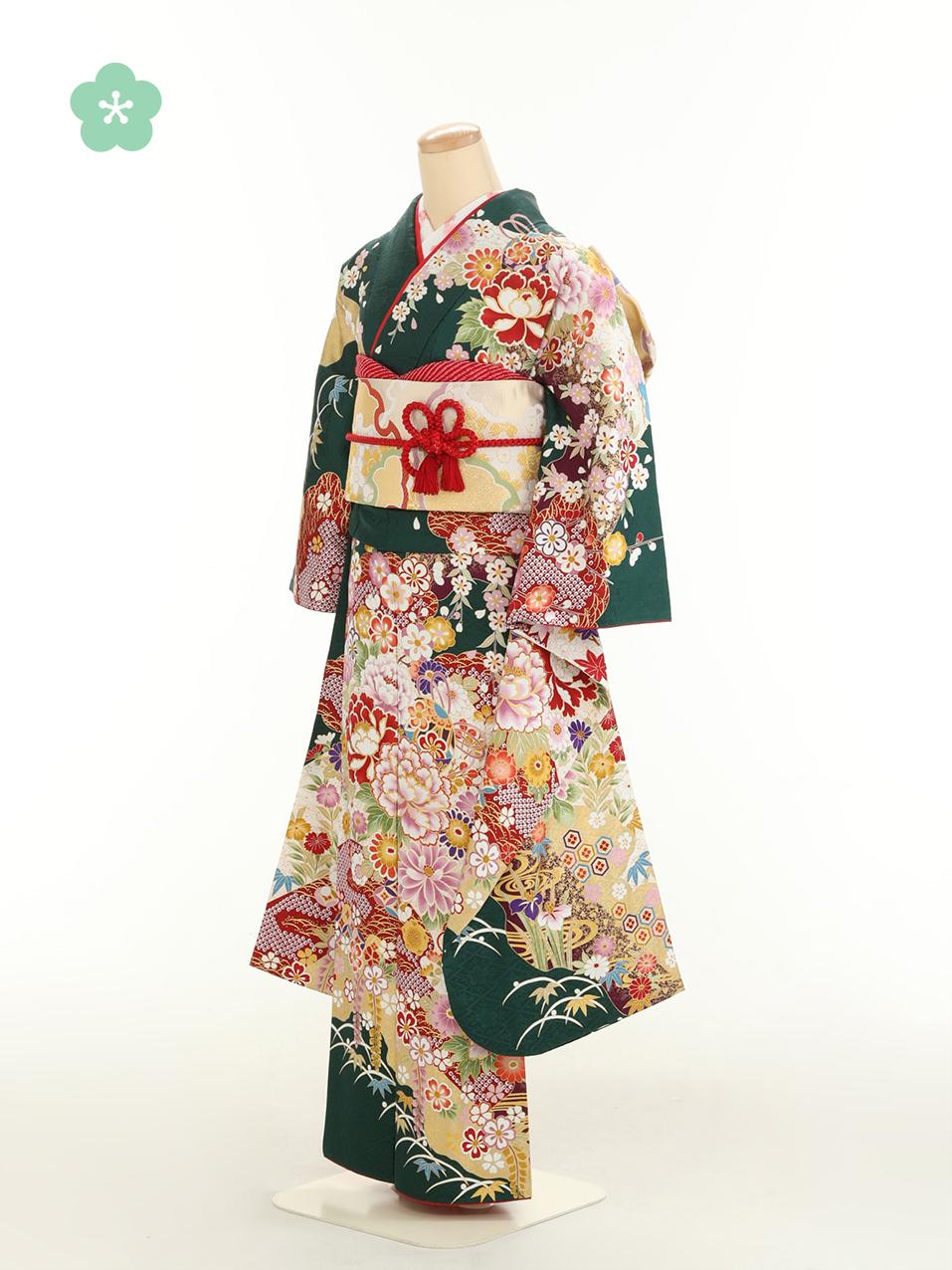 成人式衣裳20 おでかけOK!