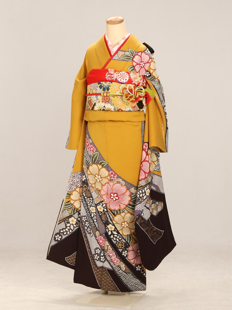 成人式衣裳13 お出かけOK!