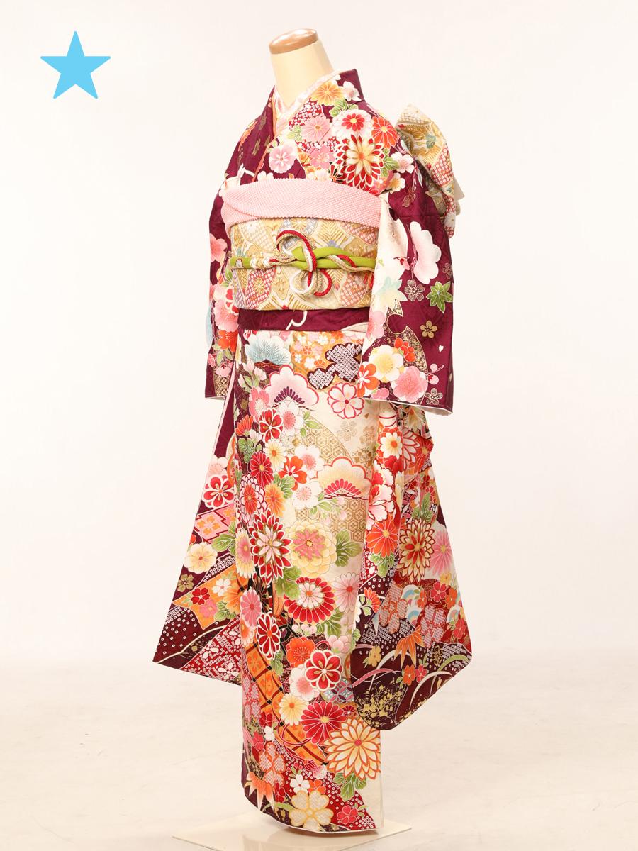 成人式衣裳29 <ランクアップ>お出かけOK!